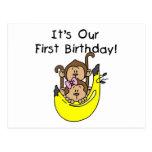Twins - Boy and Girl Monkey 1st Birthday Postcard