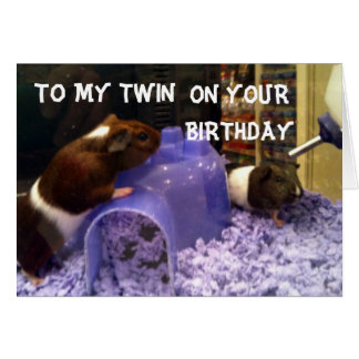 TWINS HAMSTER HUMOR=EASY TO BE YOUR TWIN CARD