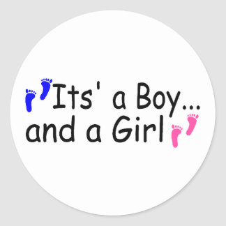 Twins Its A Boy and A Girl Stickers