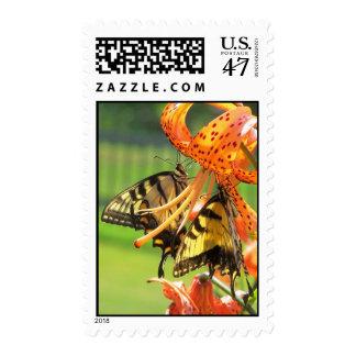 Twins Postage Stamp
