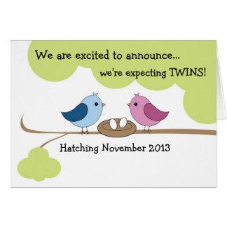 "Twins Pregnancy Announcement ""Birds in Nest"""