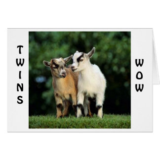 TWINS=WOW=CONGRATULATIONS SAYS THE TALKING GOATS CARD