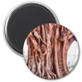 Twisted gnarled tree 2 inch round magnet
