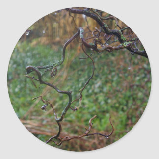 Twisted Hazel Classic Round Sticker