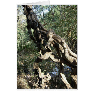 Twisted Roots Card
