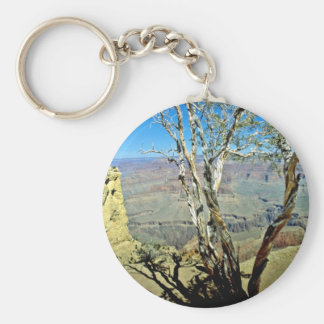 Twisted Tree At Edge Of Grand Canyon Key Chain