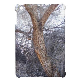 Twisted Tree iPad Mini Cases