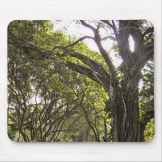 Twisted Tree Mouse Pad