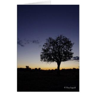 TWLIGHT IN BOTSWANA greeting card