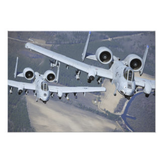 Two A-10C Thunderbolt II aircraft fly in format Art Photo