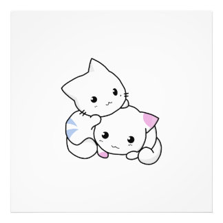 Two adorable baby kittens cuddle together photo print