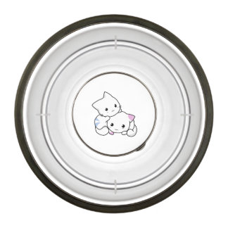 Two adorable baby kittens cuddle together pet bowl