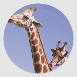 Two Affectionate Giraffes Classic Round Sticker