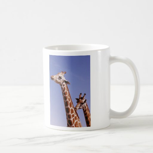 Two Affectionate Giraffes Coffee Mug