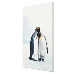 Two affectionate penguins canvas print