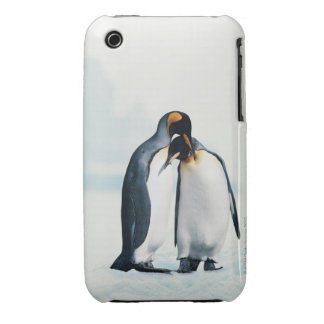 Two affectionate penguins iPhone 3 case