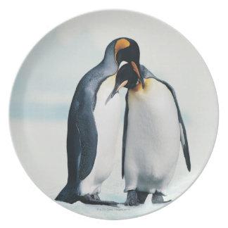 Two affectionate penguins melamine plate