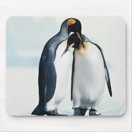 Two affectionate penguins mouse pads