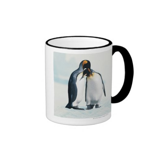 Two affectionate penguins mugs
