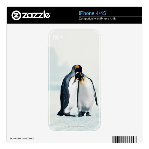 Two affectionate penguins decal for iPhone 4