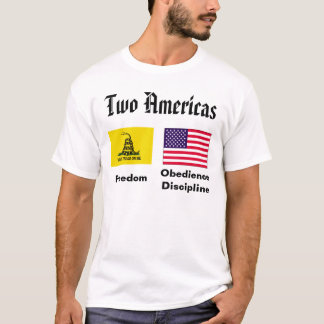 Two American Flags T-Shirt