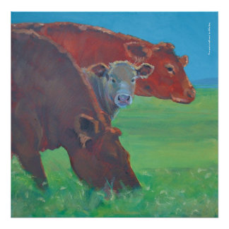 'Two and a half cows' painting Poster