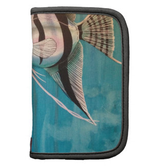 Two angel fish with silver and black and blue organizers