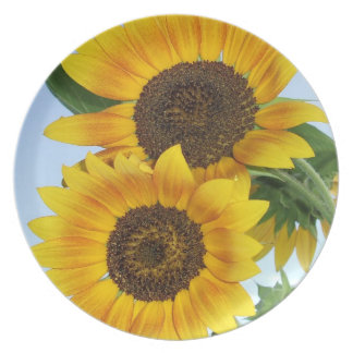 Two Artsy Autumn Beauty Sunflower Blossoms Melamine Plate