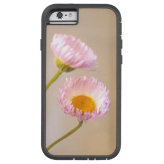 Two Aster Wildflowers in Purple / Lavender, Yellow Tough Xtreme iPhone 6 Case