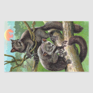Two Aye-Ayes in a Tree in Madagascar Vintage Rectangle Stickers