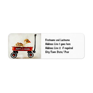 Two Baby Chicks in Red Wagon Label