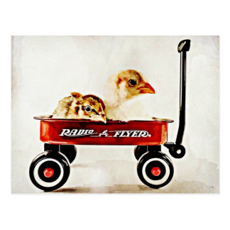 Two Baby Chicks in Red Wagon Postcards