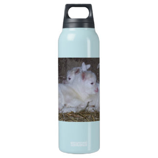 Two Baby Goats in Straw Insulated Water Bottle