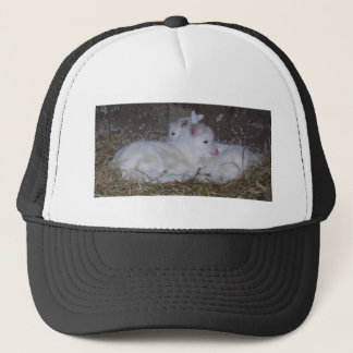 Two Baby Goats in Straw Trucker Hat