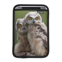 Two Baby Great Horned Owls Sleeve For iPad Mini