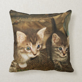 TWO BABY KITTENS pillow