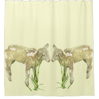 Two Baby Lambs on Yellow Shower Curtain