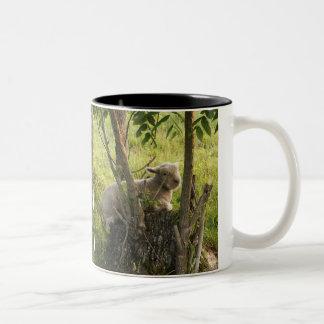 Two Babydoll Lambs Two-Tone Coffee Mug