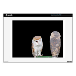 """Two barn owls isolated on dark background 15"""" laptop decal"""