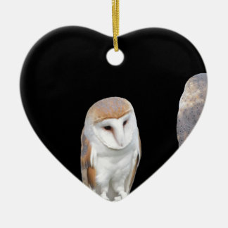 Two barn owls isolated on dark background ceramic ornament