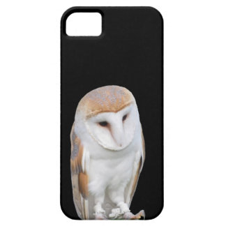 Two barn owls isolated on dark background iPhone SE/5/5s case