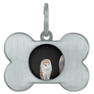 Two barn owls isolated on dark background pet ID tag
