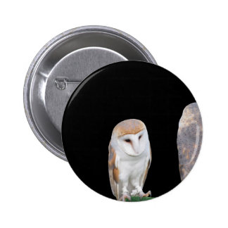 Two barn owls isolated on dark background pinback button