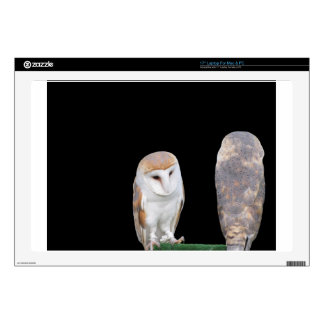 """Two barn owls isolated on dark background skins for 17"""" laptops"""