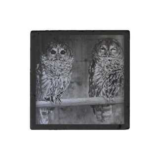 Two Barred Owls Stone Magnet