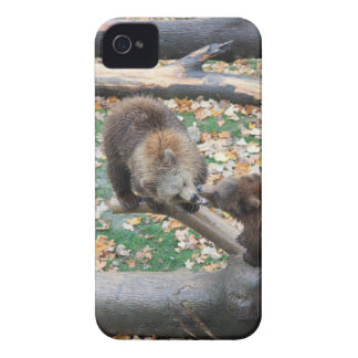 Two bears iPhone 4 Case-Mate case