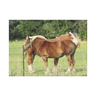 Two Beautiful Amber Horses Next to a Farmhouse Pho Canvas Print