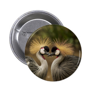 Two beautiful Grey Crowned Cranes kissing Button