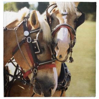 Two Belgian Draft Horses Cloth Napkin