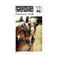Two Belgian Draft Horses Postage
